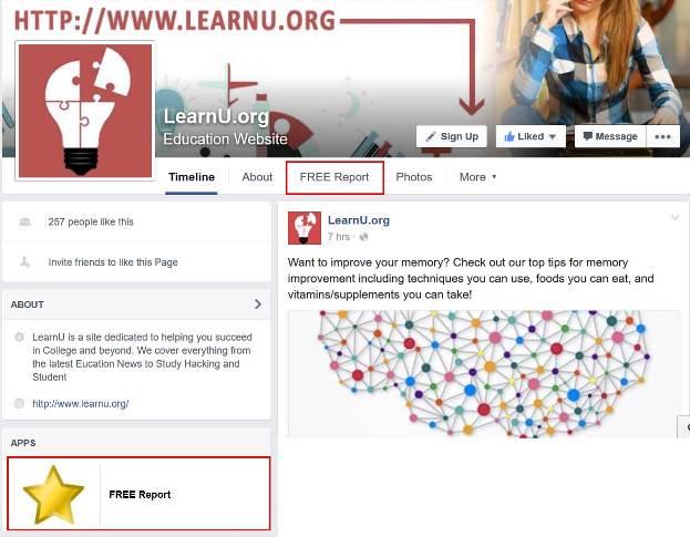 fb-page-free-report-tab-app