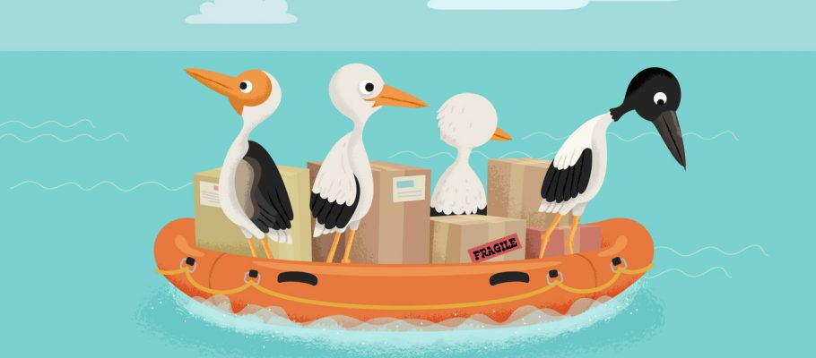 Wired Investors: Keeping Your Drop Shipping Business Afloat